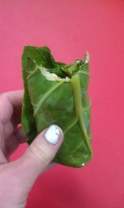 My super yummy wrap! :)